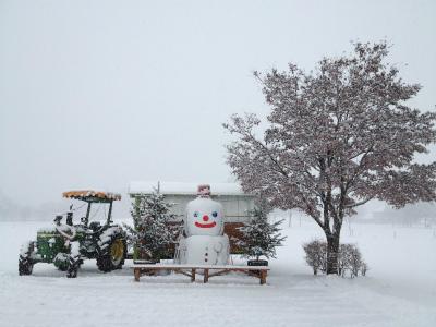 真っ白な雪景色、クリスマスリースづくりにぴったりな雰囲気です。