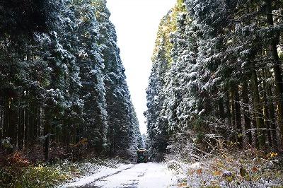 雪景色! トラクターバスツアー