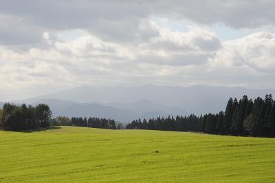 矢取森牧草地